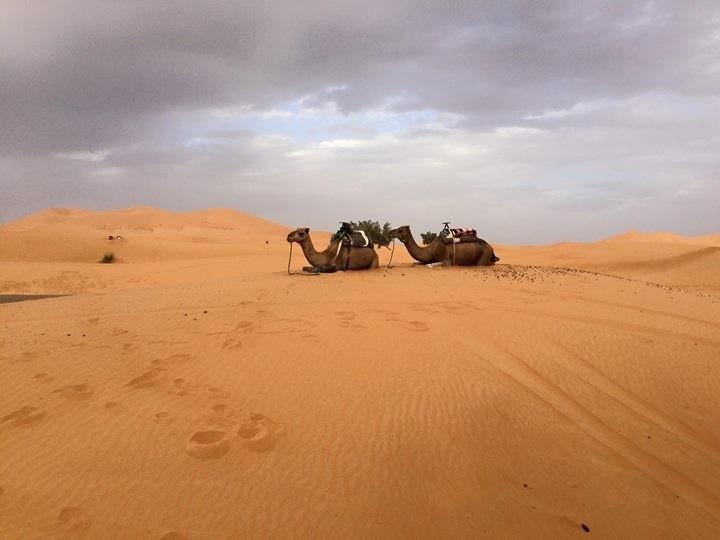 Il mio Marocco