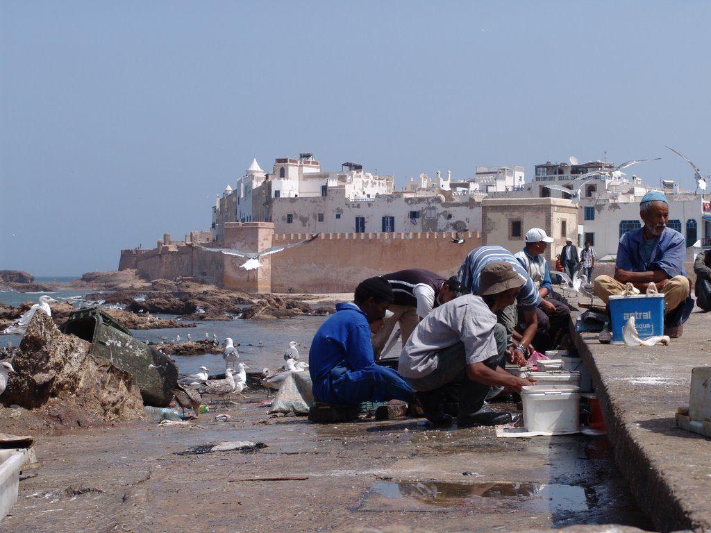 Essaouira Marocco